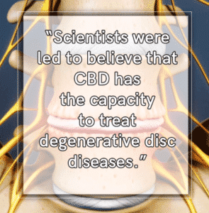 How does CBD Help Degenerative Discs